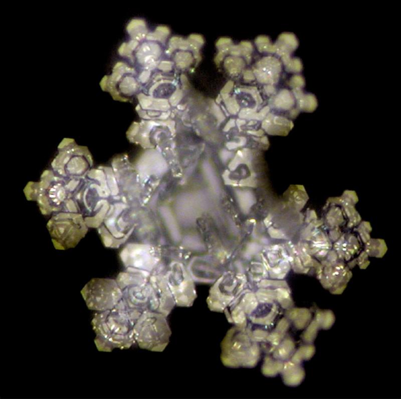 Wirkung Edelsteinstab nach Behandlung belegt dank Mikrofotografie